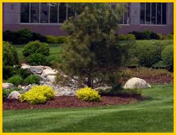 Landscape Management Services by Commercial Landscape Maintenance Las Vegas Lawn Maintenance