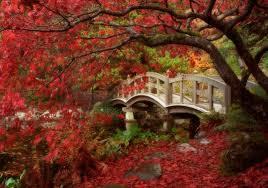 imagenes de jardines japones jardín japonés palermo buenos aires travel