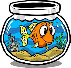 fish tank clipart 159537