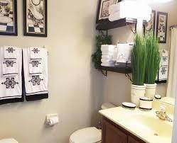 Ideas On Bathroom Decorating Entranching Bathroom Decor Ideas On A Budget