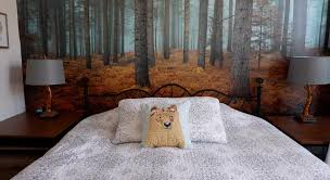 Aspen Bed And Breakfast Aspen Inn King Suite Book Online Bed U0026 Breakfast Europe