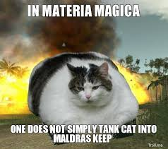 Tank Meme - cat tank teh meme wiki fandom powered by wikia