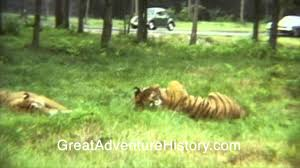 Six Flags Wild Safari Six Flags Great Adventure Safari Park 1975 Youtube