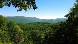 Tennessee Forest images Tennessee smoky mountains forest mountain landscape wallpaper and jpg