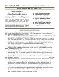 ceo resumes examples page 4 ceo resume example sample resume