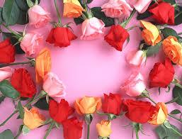 imagenes bonitas que brillen rosas que brillan imagen 3739 imágenes cool