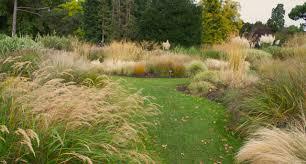grass garden design 2 modern garden design courtyard easy lawn grass