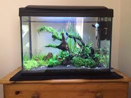 Aquascape Lighting Planted Tank Shrimp Haven By Carol Sibley Aquarium Design
