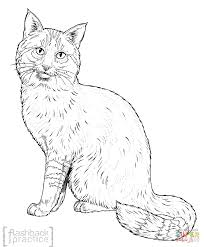 jungle cat coloring page free printable coloring pages