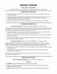 best resume format for executives resume format for executive new 24 best sle executive resume
