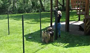 6 dog fence kit standard