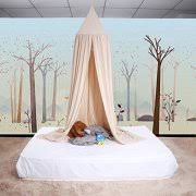 Canopy Bed Curtains For Girls Canopy Curtains