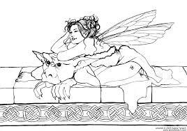 beautiful design fairy coloring book fantasy books adults