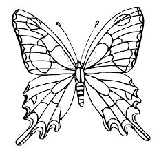 free butterfly coloring pages for you image 53 gianfreda net