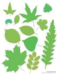 leaf templates tim u0027s printables