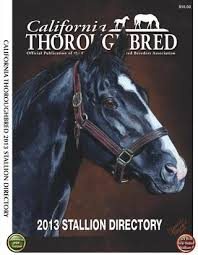 bred siege social california thoroughbred 2013 stallion directory by ctba issuu