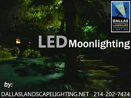 Dallas Landscape Lighting Moonlighting Tree Lighting Dallas Landscaping And Lights