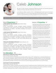 Resume Sample For Marketing Executive The 25 Best Marketing Resume Ideas On Pinterest Resume Job