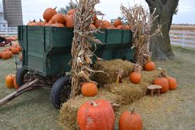 harvest decorations fall harvest decorating ideas for your home and landscape