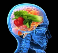 brain foods the adhd diet u0026 essential foods for the mind