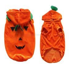 Halloween Costumes Pumpkin Woman Pumpkin Costumes Dogs Ebay