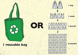 reusable grocery bags plastic or paper bag what is your choice