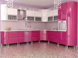 pink kitchen ideas interior design trends 2017 pink kitchen