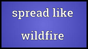 Wildfire Definition spread like wildfire meaning youtube