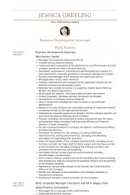 business development associate resume samples visualcv resume