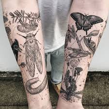 ibas dan tattoo 73 best tatoos images on pinterest beetles tattoo ideas and bees