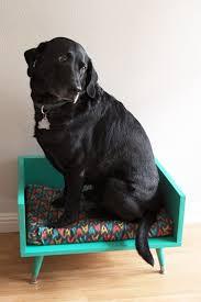 Pug Home Decor Best 25 Midcentury Dog Toys Ideas On Pinterest Midcentury Cat