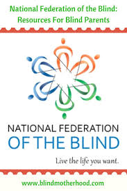 Support Groups For The Blind 254 Best Blogs U0026 Websites For Parents Of Visually Impaired