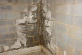 wet basement wall diy forums