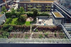 10 ways to make multi family housing more eco friendly make the rooftop sustainable