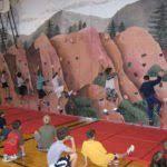 backyard rock climbing wall kids dma homes 3263