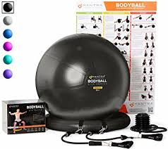 Chair Gym Review Amazon Com Exercise Ball Chair 65cm U0026 75cm Yoga Fitness