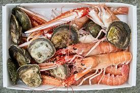north of nordic a young chef invents u0027neo fjordic u0027 cuisine the