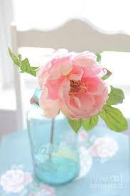 shabby chic flowers peony vintage jar ethereal dreamy peony flower shabby