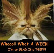 Thank God Its Friday Memes - thank god it s friday tgif funny quotes and humor