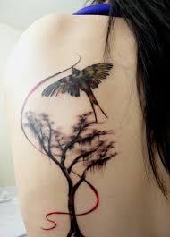 laser tato di jogja 58 best tattoo ideas images on pinterest tree tattoos tatoos and