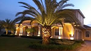 Custom Landscape Lighting by Uplighting Orlando Landscape Lighting Orlando Outdoor Lighting