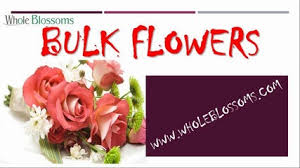 cheap bulk flowers cheap iris flowers in bulk whole blossoms dailymotion