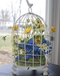Bird Cage Decor Todo Transfer Bird Cages Bird And Terra Cotta