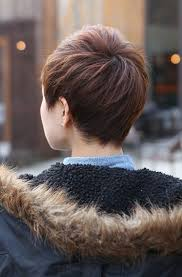 sexy hot back views of pixie hair cuts back view of short layered boyish cut 2013 pixie cut