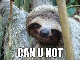 Make A Sloth Meme - sloth meme you are welcome meme best of the funny meme