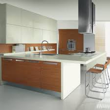 Kitchen Range Hood Design Ideas by Interior Adjustable Range Hood Kitchen Range Hood Designs With