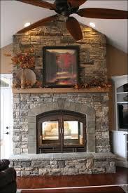 Real Flame Fireplace Insert by Interiors Amazing Gel Fuel Bunnings Real Flame Gel Logs Gel Log