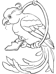 parrots coloring pages parrot coloring pages download and print parrot coloring pages