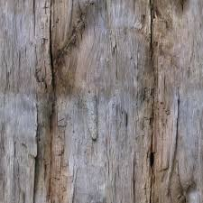 bark and tree seamless and tileable high res textures