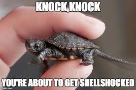 Ninja Turtles Meme - image tagged in ninja turtle memes imgflip